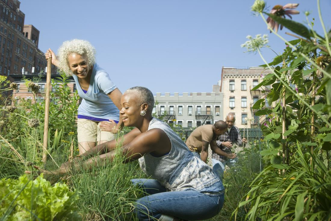 Mature or senior black women and men outdoors in urban park gardening