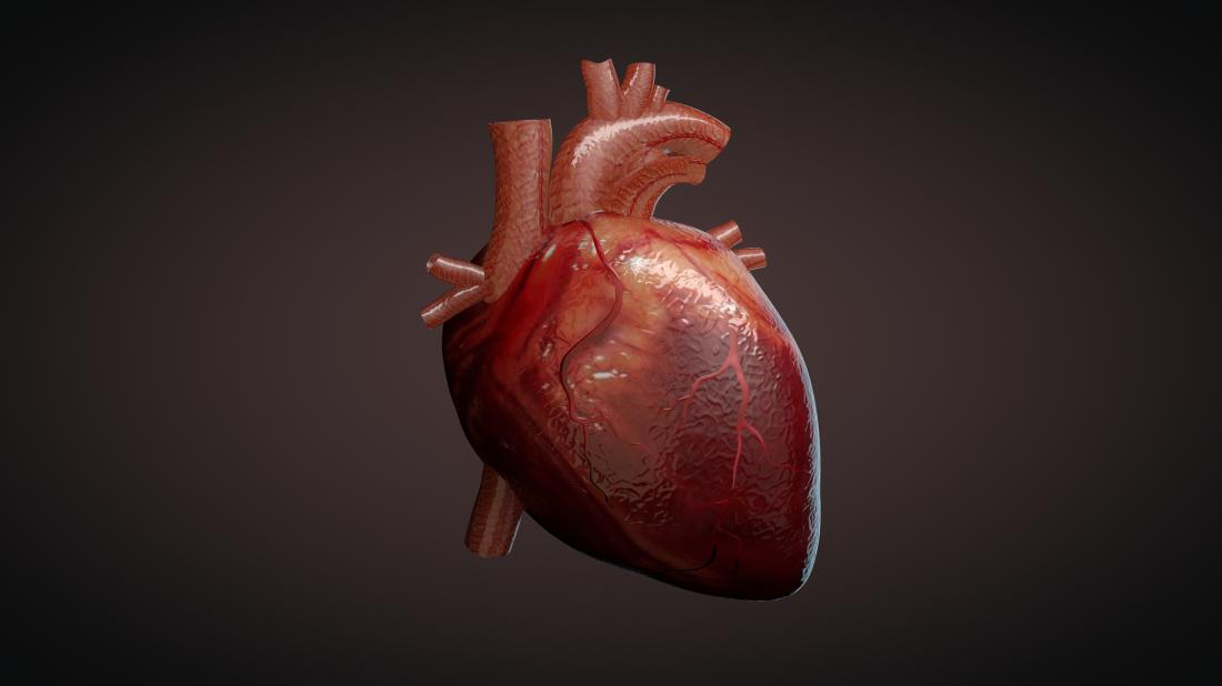 3d illustration of a heart