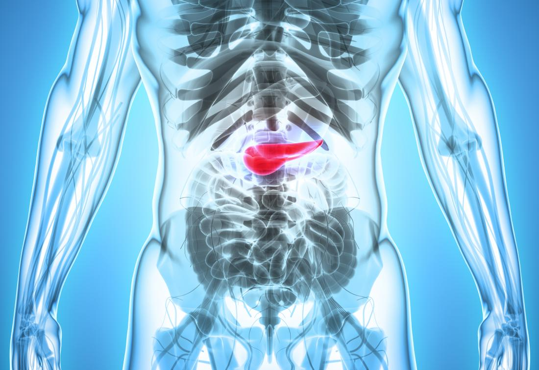 3d image of the pancreas