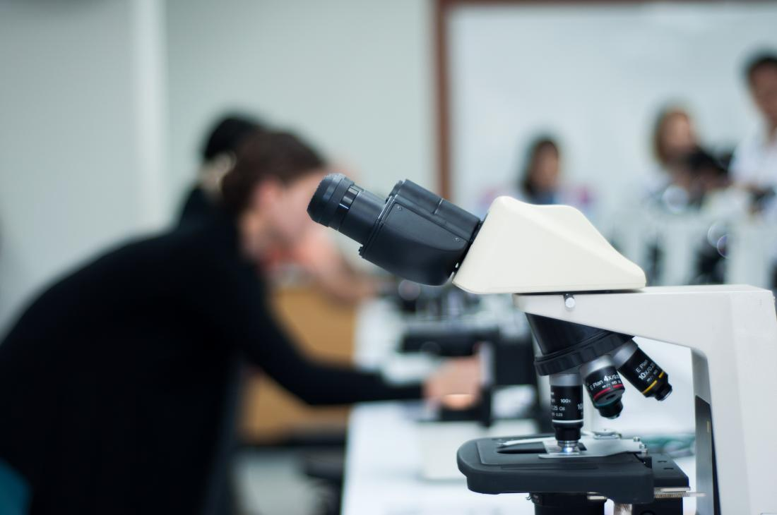photos of researchers in the lab with microscope in the foreground