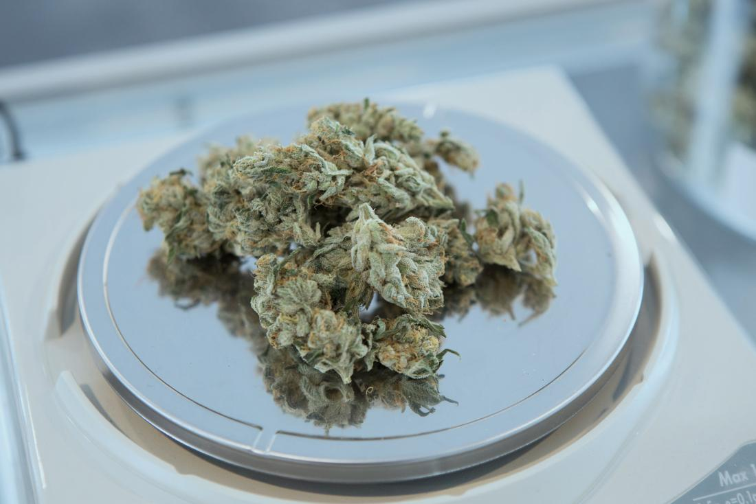 picture of dried cannabis plant