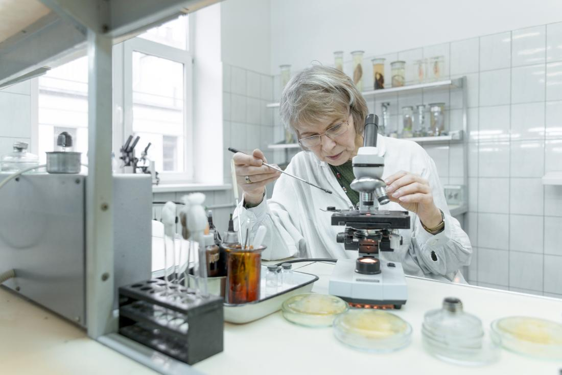 scientist studying bacteria