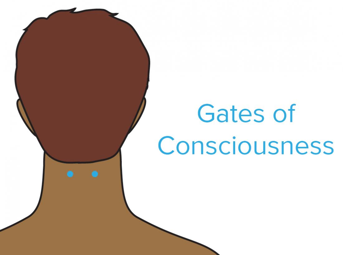 a diagram showing the gates of gates of consciousness pressure point