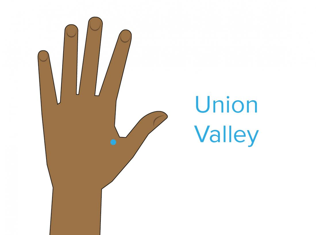 a diagram showing the union valley pressure point.