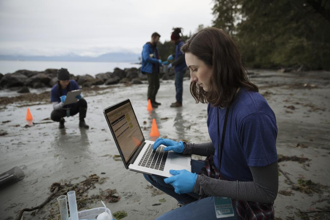 researchers taking samples from an estuary