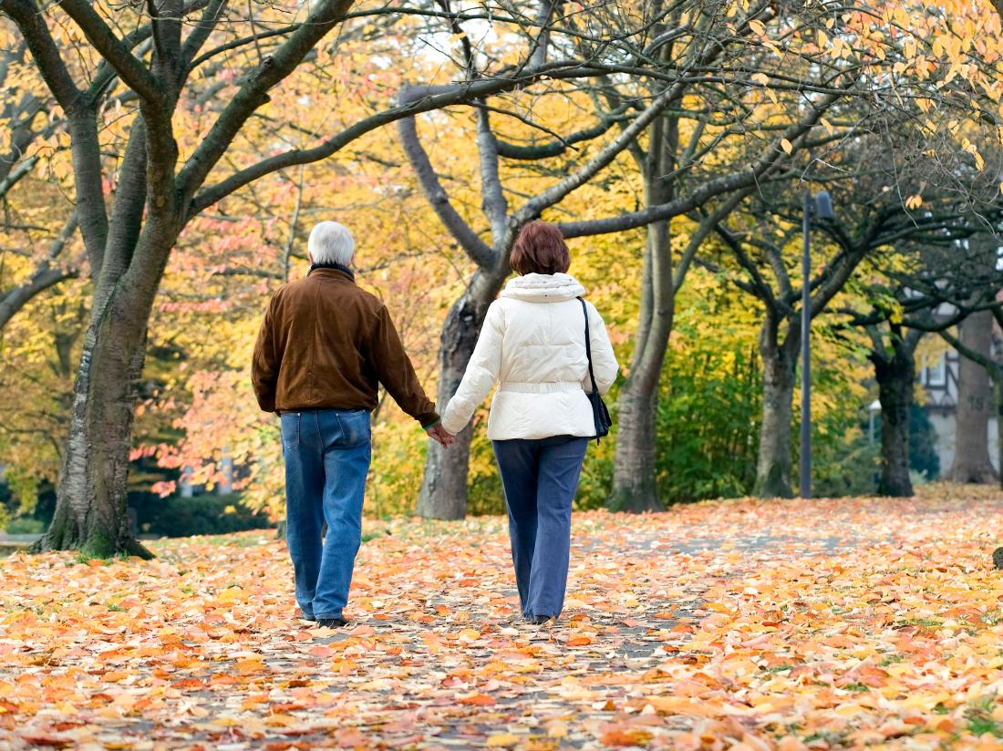 a couple going for a walk through a leafy park.