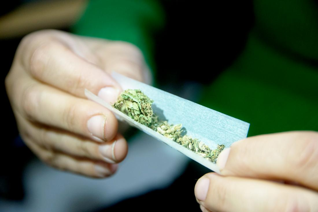 Female hands rolling a marijuana joint that might kill you