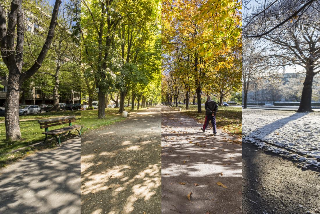 Four seasons in one park