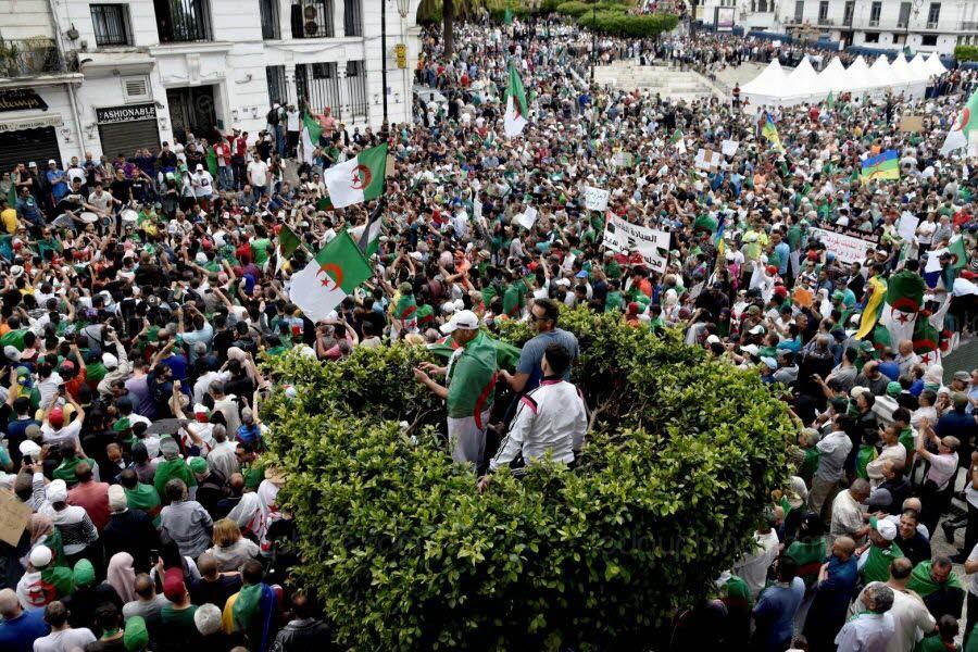 À Alger. Photo RYAD KRAMDI / AFP