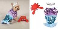 Glim Mermaid Costume for Dogs - Under the from ...