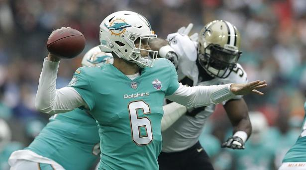 Image result for jay cutler dolphins