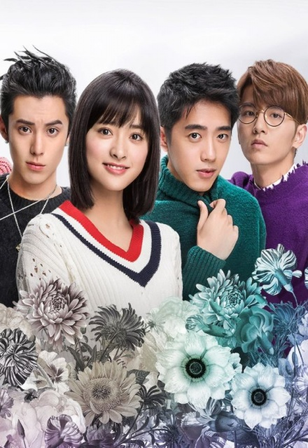 Meteor Garden 2018 Streaming : meteor, garden, streaming, Meteor, Garden, Netflix, Show,, Episodes,, Reviews, SideReel