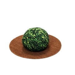 Small Ball Chair Children S Table And Chairs Wooden Topiary Beanbag Ficus Chic Sin