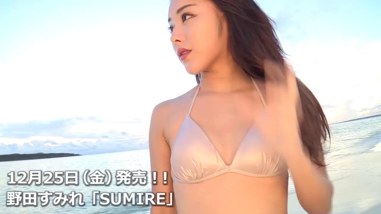 LPFD-346 野田すみれ 「SUMIRE」