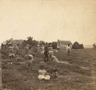 schiavi south carolina 1863