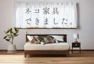arredamento per gatti 3