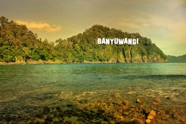 Image result for banyuwangi