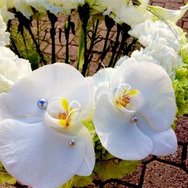 les 10 meilleurs fleuristes a maizieres