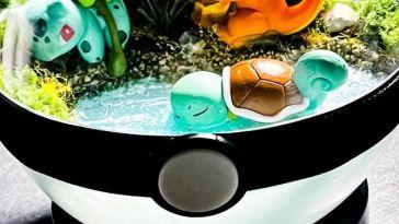 """L'image du jour : Des Pokéballs """"terrarium"""" de toute beauté"""