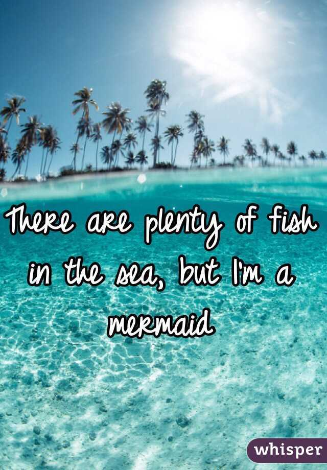 Lots of fish in the sea dating site