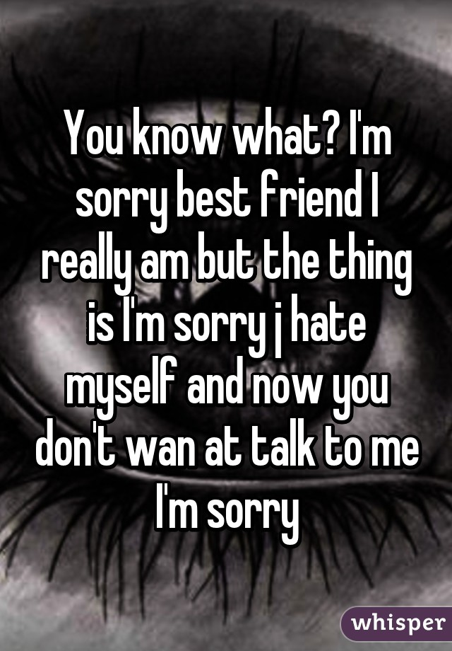 Im Sorry Best Friend : sorry, friend, What?, Sorry, Friend, Really, Thing