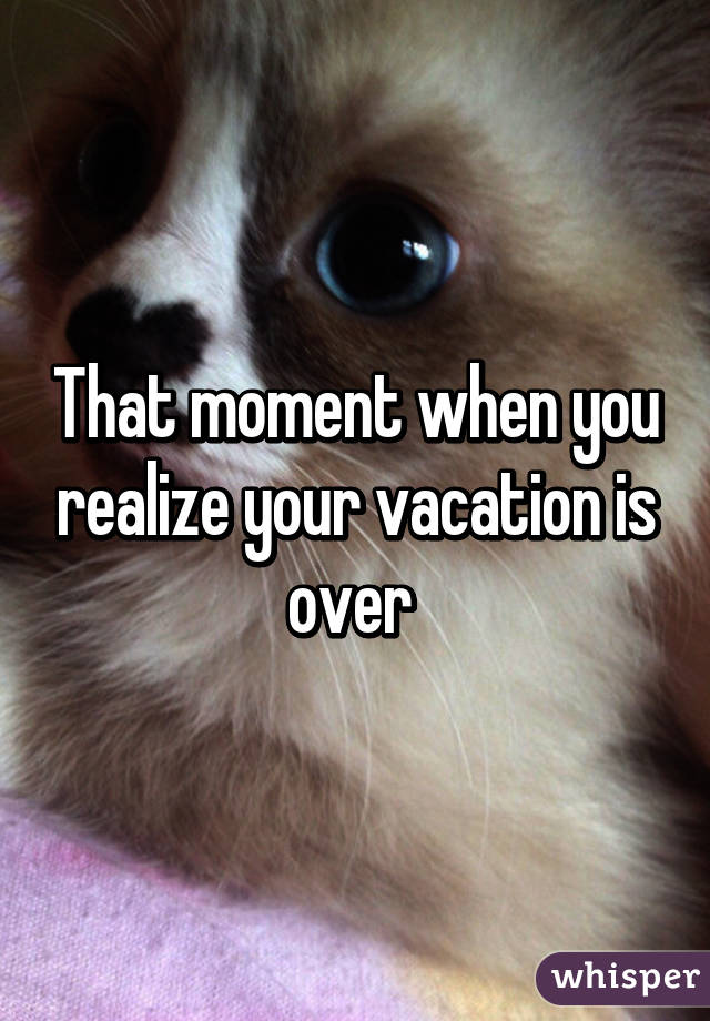 That Moment When You Realize Your Vacation Is Over