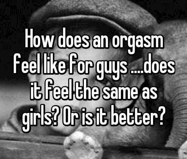 How Does An Orgasm Feel Like For Guys Does It Feel The Same As Girls