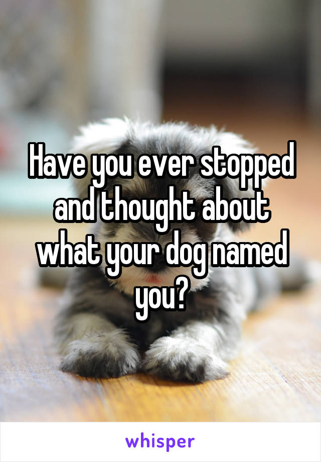 Image result for what do you think your dog has named you