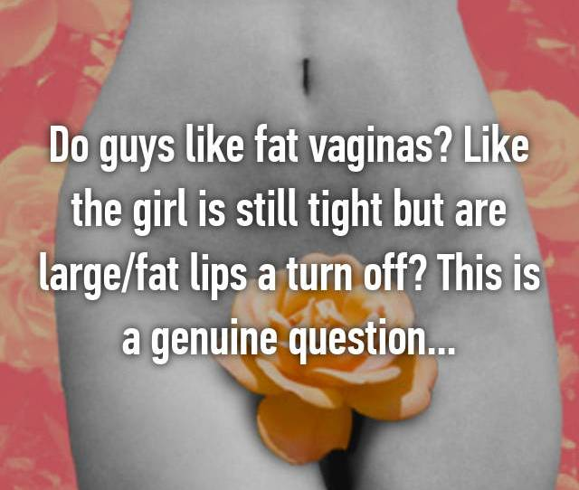Do Guys Like Fat Vaginas Like The Girl Is Still Tight But Are Large Fat Lips A Turn Off This Is A Genuine Question