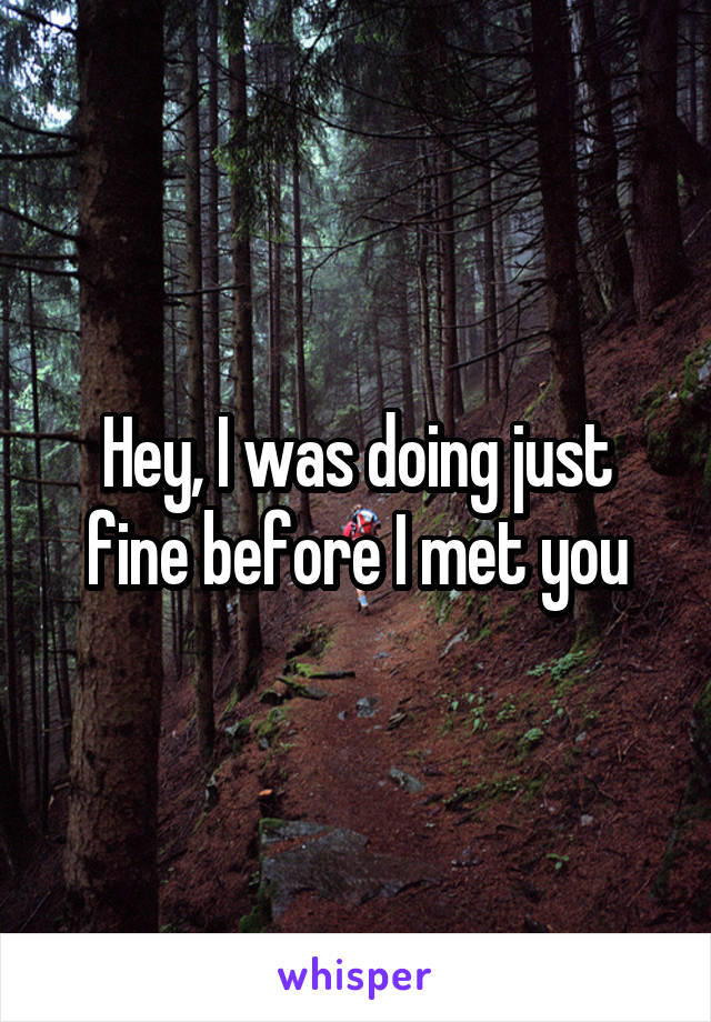 Hey I Was Doing Just Fine Before I Met You : doing, before, Doing, Before