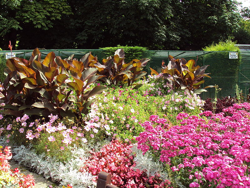 Ideas For Planting A Flower Garden Garden Guides