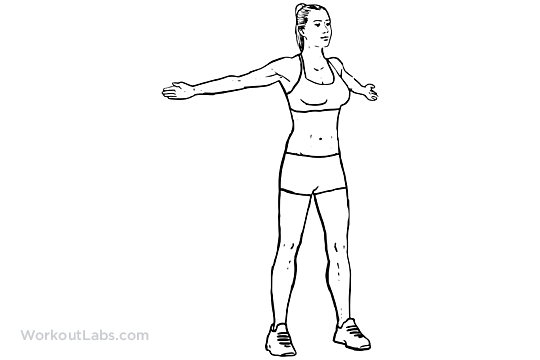 Wide Arm Chest Stretch / Reverse Butterfly Stretch