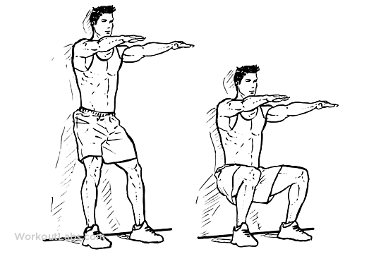Wall Sit  Squats  Chair  WorkoutLabs