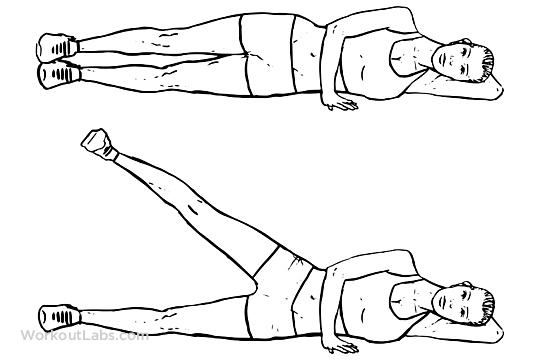 Lying Side Leg Lifts / Lateral Raises / Hip Abductors