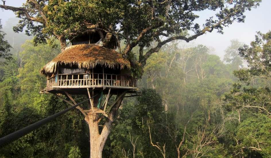 Resultado de imagen para vivienda de la selva