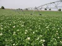 Agricultura transfiere 4.466 millones de las ayudas de la PAC a las comunidades autónomas, 405 a Aragón
