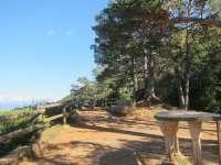 Aprobados los planes de protección para los Pinares de Rodeno, San Juan de la Peña y Monte Oroel