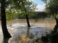 La crecida del Ebro no afectará al casco urbano en Gallur