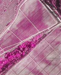 El CITA mejora la gestión agrícola con el uso de drones