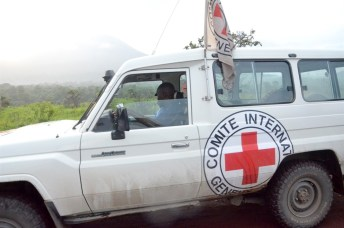 An International Committee of the Red Cross (ICRC)