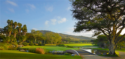 nedbank golf challenge, gary player country club