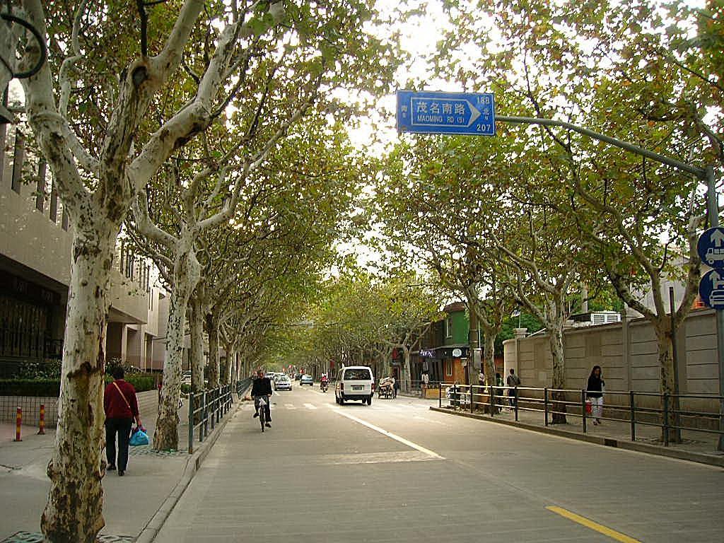 『上海・秋の永嘉路』上海(中國)の旅行記・ブログ by 井上@打浦橋@上海さん【フォートラベル】