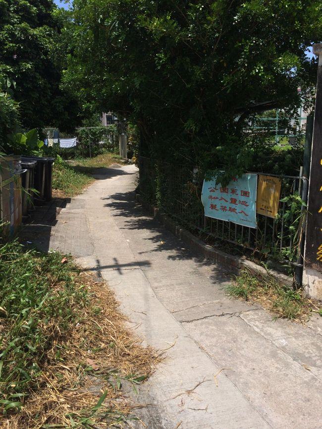 『ウィルソントレイルセクション4(井欄樹-沙田パス)で3時間 ...