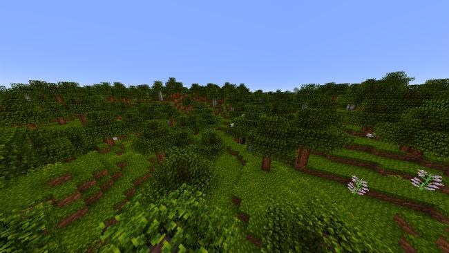 Woodpecker-resource-pack-2.jpg
