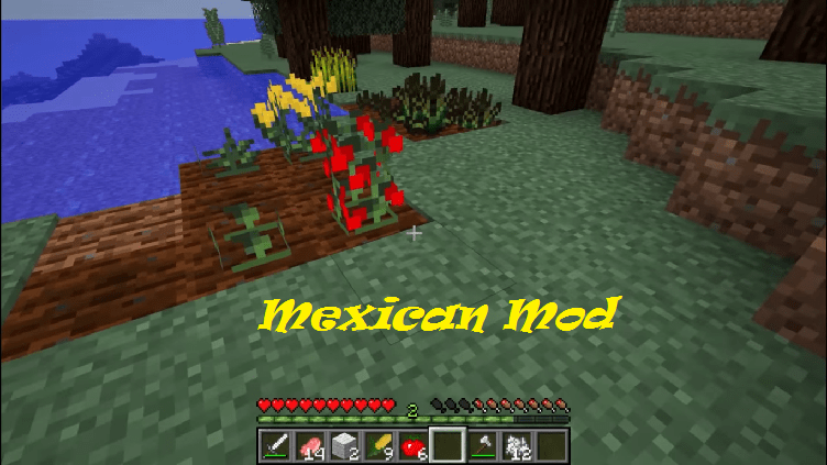 Mexican Mod