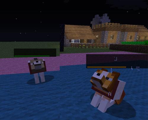 Dog-Cat-Plus-Mod-2.jpg