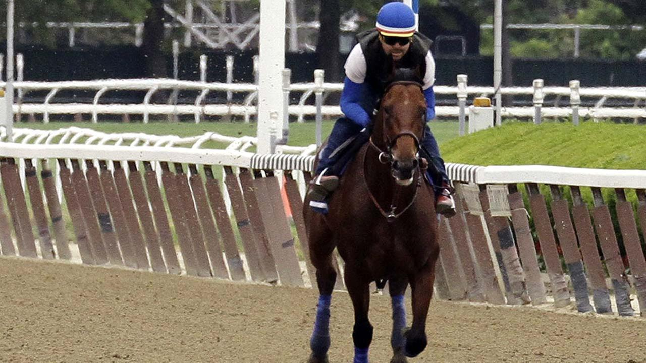 Gallant Fox - The Second Triple Crown Winner- What a Horse He Was!