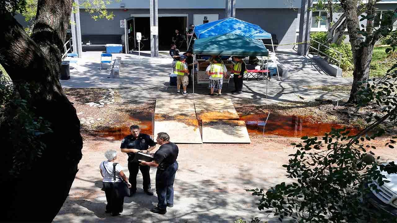 Image result for photos of hollywood hills fl rehabilitation center