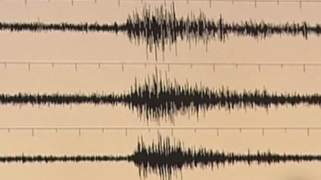 Seismologists to test for earthquakes at Saturday's Panthers game