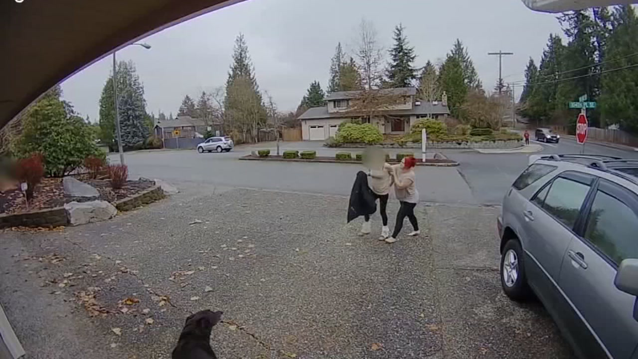 Woman Steals Package Front Porch